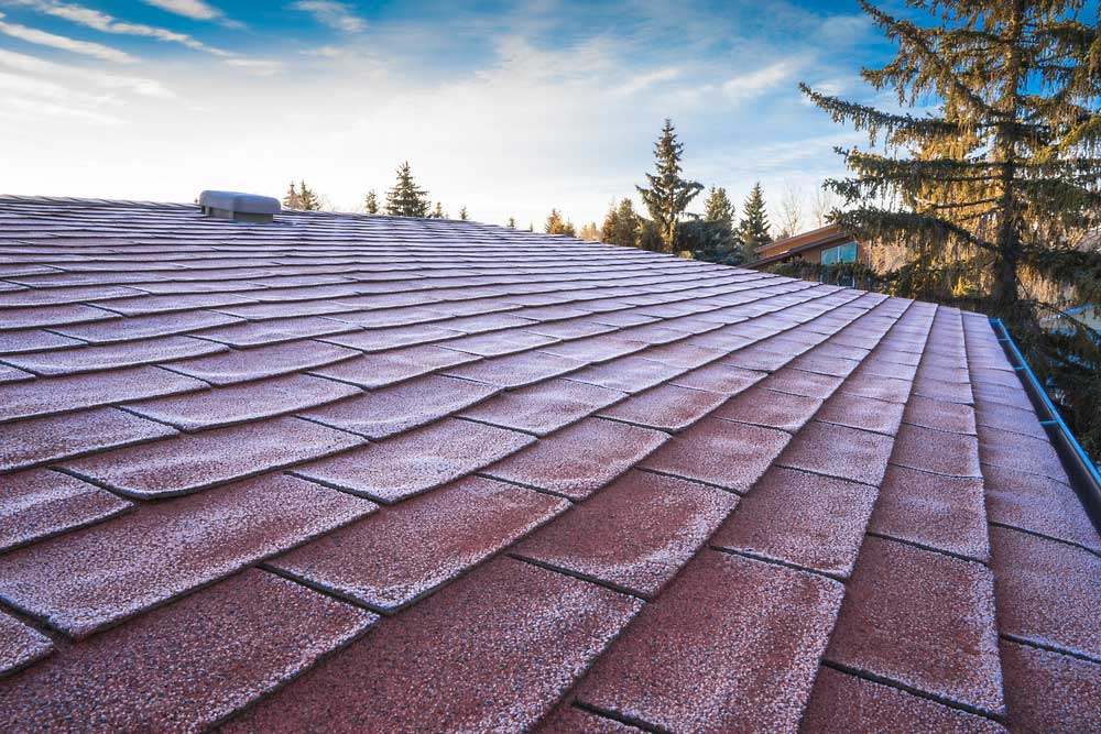 Colorado Home Inspector - Chief Home Inspection - Roof